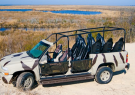 Back Country Safari Tours - Wild Horse Tours